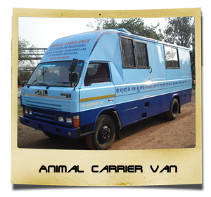 Animal-Carrier-Van
